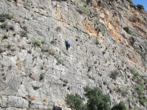 MAD WALL (22 Climbs)