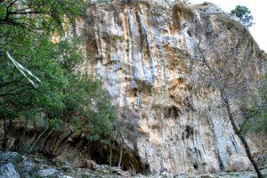 MIKRI SINJHA (5 Climbs)
